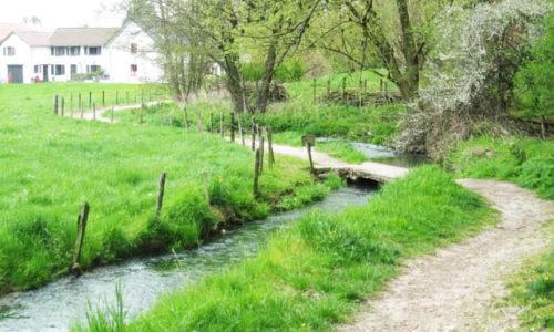 Mesch-brug